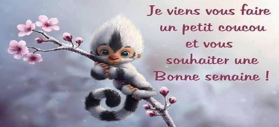 Message Bon Lundi